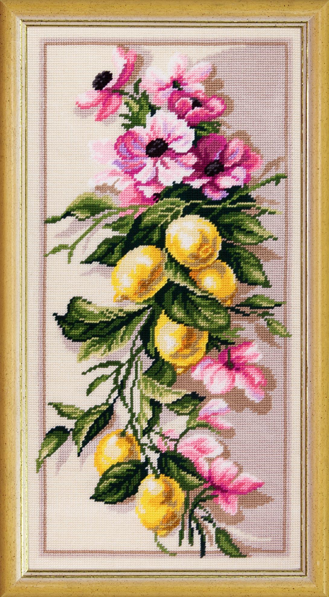 TS-53: Лимонная ветвь