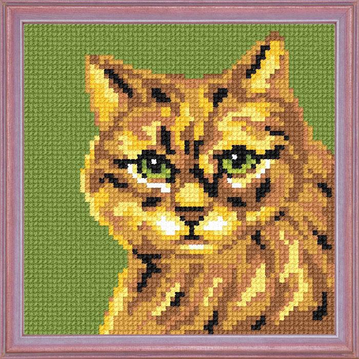 A22 — Руда кішка