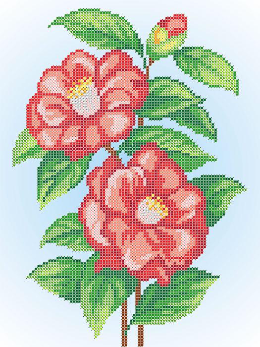 A541 — Китайська троянда